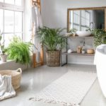 The Best Herbal And Natural Plants To Get Rid Of Bathroom Odour